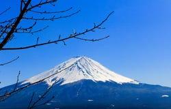 Fuji san in the winter, Japan Royalty Free Stock Photo