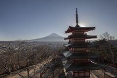 Fuji Shureito fotografia stock