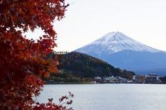 Fuji und Ahorne stockbilder