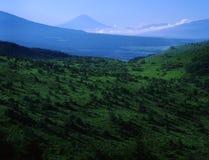 Fuji van MT Royalty-vrije Stock Afbeeldingen