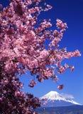 Fuji van MT Royalty-vrije Stock Foto