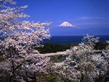 Fuji van MT Stock Foto