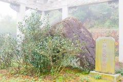 FUJIAN CHINY, Dec, - 24 2015: Stwarza ognisko domowe oryginalna Tieguanyin herbata Obraz Royalty Free