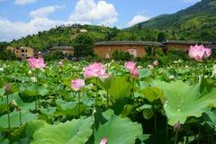 Fujian Tulou Royaltyfri Foto
