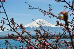 Fujiberg bij Kawaguchiko-meer stock foto