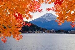 Fujiberg en oranje esdoorn royalty-vrije stock afbeeldingen