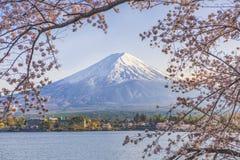 Fujiberg en Sakura Tree met Jachtpijler bij Kawaguchiko-Meer Royalty-vrije Stock Fotografie