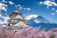 Fujibergen en kasteel met kersenbloesem in de lente stock afbeeldingen