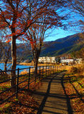 Fujikawaguchiko Autumn Path Royalty Free Stock Photos