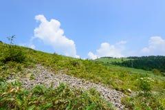 Fujimidai高地在长野/岐阜,日本 免版税库存照片