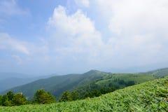 Fujimidai högland i Nagano/Gifu, Japan Royaltyfria Bilder