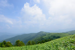 Fujimidai Highland in Nagano/Gifu, Japan Royalty Free Stock Images