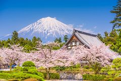 Fujinomiya, Shizuoka, Japan with Mt. Fuji. And temples in spring season stock photos