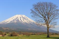 Fujisan Imagen de archivo libre de regalías