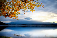 Fujisan Fotografia de Stock
