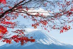 Fujisan bij Meer Kawaguchiko Stock Afbeelding
