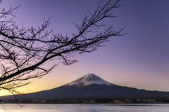 Fujisan bij Meer Kawaguchiko Stock Foto's