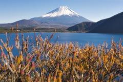 Fujisan bij Meer Motosu Stock Foto's