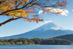 Fujisan e Momiji no lago Kawaguchiko Fotografia de Stock Royalty Free