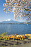 Fujisan e Sakura no lago Kawaguchiko Imagem de Stock