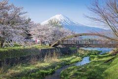 Fujisan e Sakura no lago Kawaguchiko Foto de Stock Royalty Free