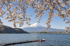 Fujisan en Sakura bij Meer Kawaguchiko Stock Foto's