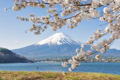 Fujisan en Sakura bij Meer Kawaguchiko Royalty-vrije Stock Fotografie