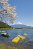 Fujisan en Sakura bij Meer Tanuki Royalty-vrije Stock Afbeelding