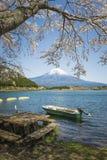 Fujisan en Sakura bij Meer Tanuki Stock Foto's