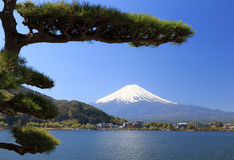Fujisan Royalty Free Stock Image