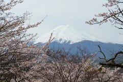 Fujisan från Shimoyoshida Japan Royaltyfri Foto