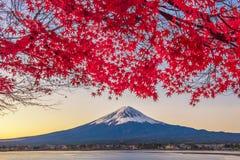 Fujisan i Momiji przy Jeziornym Kawaguchiko Fotografia Royalty Free