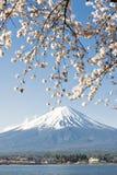 Fujisan i Sakura przy Jeziornym Kawaguchiko Fotografia Royalty Free