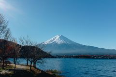 Fujisan, il monte Fuji è il più alta montagna nel Giappone con l'autunno Fotografie Stock Libere da Diritti