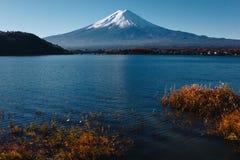 Fujisan, il monte Fuji è il più alta montagna nel Giappone con l'autunno Immagine Stock Libera da Diritti