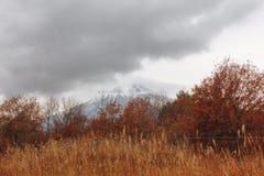 Fujisan, il monte Fuji è il più alta montagna nel Giappone con l'autunno Immagini Stock Libere da Diritti