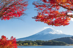 Fujisan at Lake Kawaguchiko. Mimosa Tunnel is One of the most famous location for Fuji sightseeing on the mountain in Lake Kawaguchiko, Yamanashi, Japan Stock Image