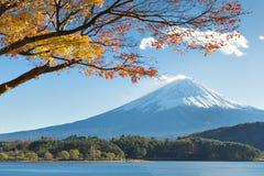 Fujisan and Momiji at Lake Kawaguchiko Royalty Free Stock Photography