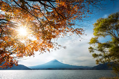 Fujisan Royalty Free Stock Photography