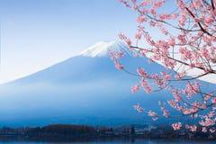 Fujisan Stock Photography