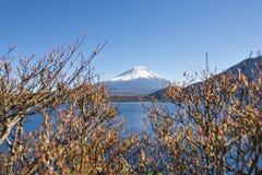 Fujisan no lago Motosu Fotos de Stock