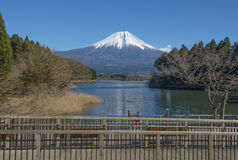 Fujisan no lago Tanuki Imagens de Stock Royalty Free