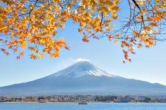 Fujisan och Momiji på sjön Kawaguchiko Arkivbild