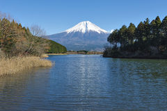Fujisan przy Jeziornym Tanuki Obrazy Stock