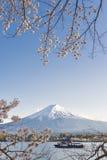 Fujisan and Sakura at Lake Kawaguchiko Royalty Free Stock Photography