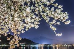 Fujisan and Sakura at Lake Kawaguchiko Stock Photography