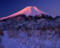 Fujisan152 Stock Afbeelding