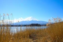 Fujiyama berg i mittpositionen Royaltyfri Foto
