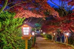 Fujiyoshida, Japan Lanterns in Autumn. Fujiyoshida, Japan lanterns lead from Arakura Sengen Shrine  at dusk during autumn season Royalty Free Stock Images