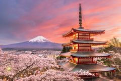 Fujiyoshida, Japan view of Mt. Fuji and Pagoda. In spring season with cherry blossoms at dusk stock images